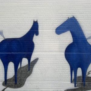study horses
